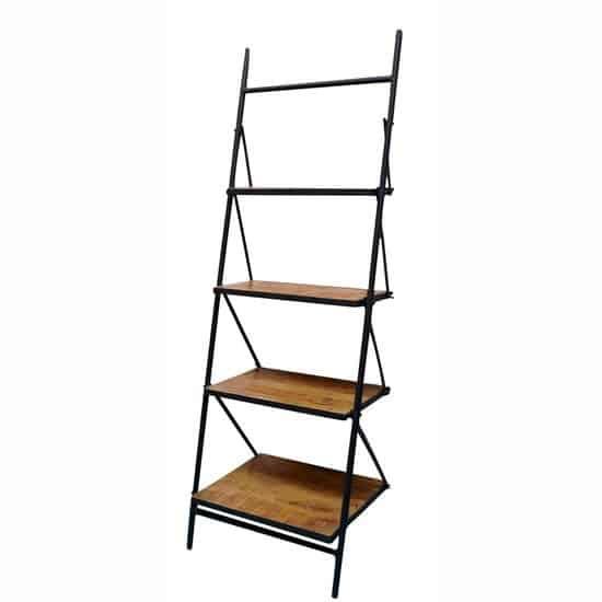 Ladder Sophie